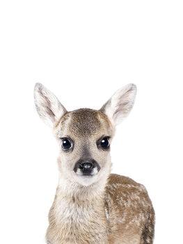 Kunstfotografi Deer 1