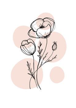Ilustrare Delicate Botanicals - Poppy