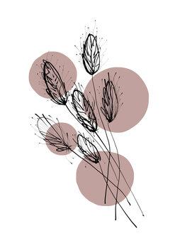 Ilustracija Delicate Botanicals - Wheat