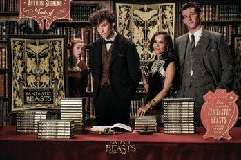 Druk artystyczny Fantastic Beasts - Author Signing