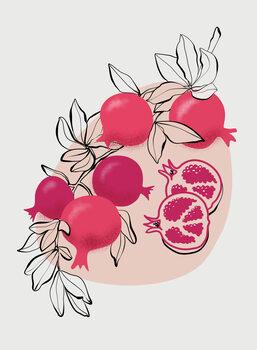Illustrazione Fathia pomegranates