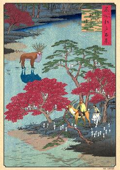 Ilustrace FLOATING KODAMAS