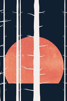 Ilustrace Forest Fairytales BLEU