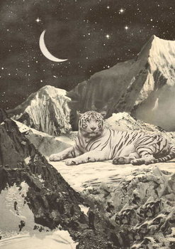Giant White Tiger in Mountains Kunsttryk
