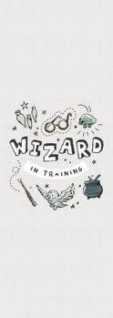 Poster Harry Potter - Assistent im Training
