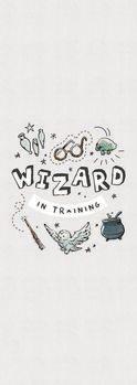 Poster Harry Potter - Čarobnjak na treningu