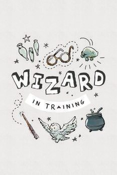 Póster Harry Potter - Mago en el entrenamiento