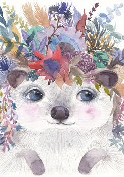 Ilustrace Hedgehog