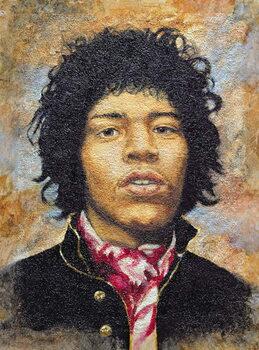 Obrazová reprodukce Hendrix (1942-70)