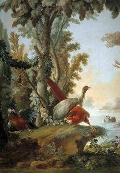 Kunstdruck Herons and parrots
