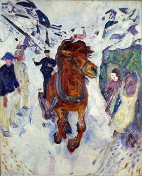 Stampa artistica Horse Gallop