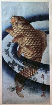 Obrazová reprodukce Japanese art, carp