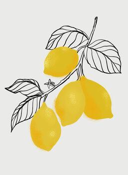 Ilustrace Lamya lemons