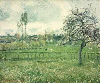 Meadow at Eragny, 1885 Kunstdruck