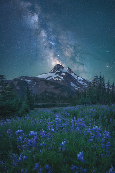 Arte fotográfico Milky Way Above Mt. Jefferson