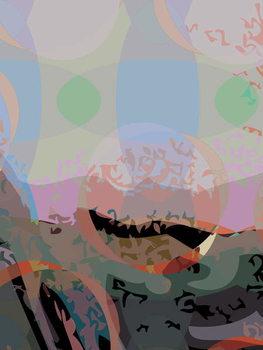 Obrazová reprodukce Mona 7