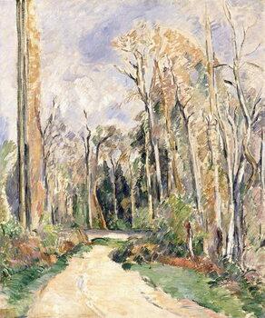 Reprodukcija umjetnosti Path at the entrance of the forest