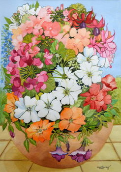 Obrazová reprodukce  Petunias, Geraniums and Fuchsias in a Terrace Pot, 2005,