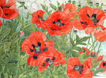 Reproducción de arte  Poppies
