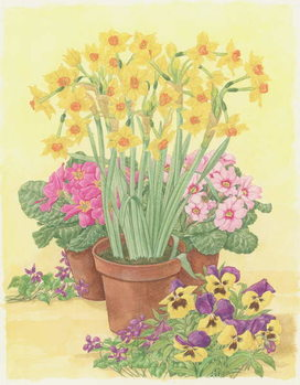 Pots of Spring Flowers, 2003 Kunstdruck