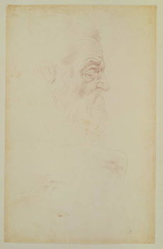 Sketch of a male head and two legs Kunstdruk