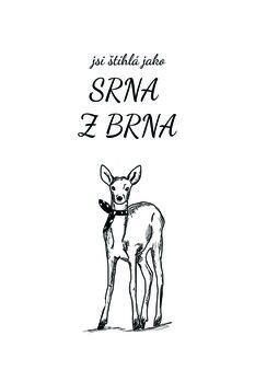 Ilustrace Srna z Brna