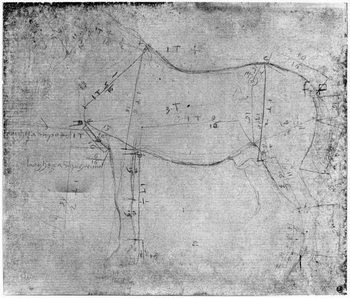 Study of a Horse (metal point on paper) Reproduction de Tableau