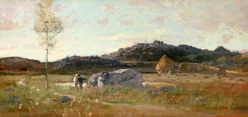 Obrazová reprodukce  Summer Landscape