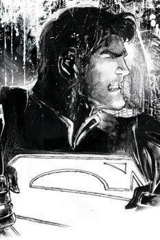 Umělecký tisk Superman - Tajná identita