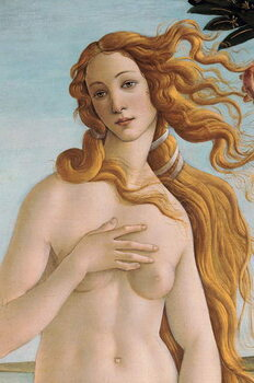Artă imprimată The Birth of Venus (detail), c.1485