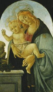 Umelecká tlač The Madonna and Child,