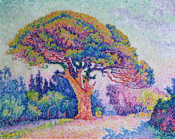 The Pine Tree at St. Tropez, 1909 Kunsttryk