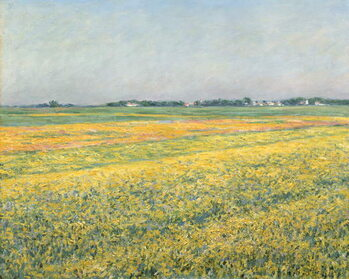 Obrazová reprodukce The Plain of Gennevilliers, Yellow Fields; La plaine de Gennevilliers, champs jaunes, 1884