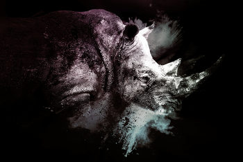 Umělecká fotografie The Rhino