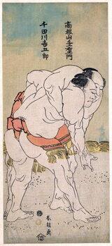 Obrazová reprodukce The Sumo Wrestlers