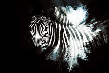 Художня фотографія The Zebra II