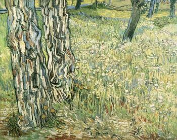 Obrazová reprodukce Tree trunks in grass, 1890, by Vincent van Gogh