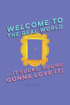 Poster Vänner  - Welcome to the real world