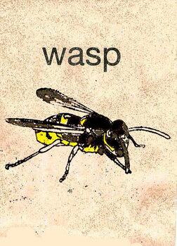 Reprodukcija umjetnosti 'Wasp' 2014