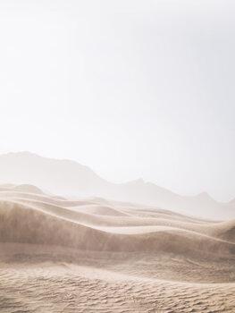 Fotografia artystyczna Windy Desert