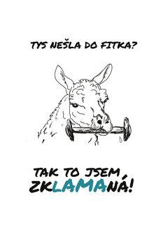 Ilustrace Zklamana lama