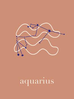 Ilustrace Zodiac - Aquarius - Terracotta