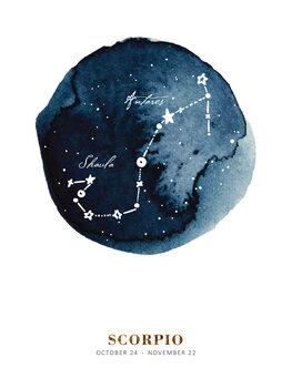 Ilustracija Zodiac - Scorpio