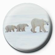 3 POLAR BEARS Badges
