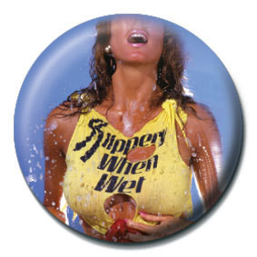 BON JOVI - Slippery when wet Badge