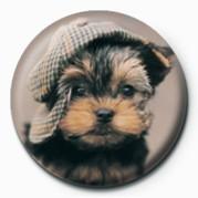 RACHAEL HALE - maxwell Badge