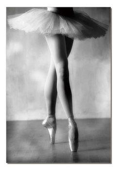 Cuadro Ballerina