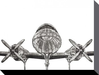 Leinwand Poster Barry Goodman - Aeroplane