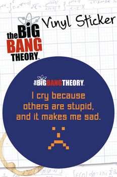 BIG BANG THEORY - stupid Autocolant
