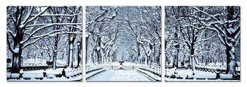 Snowy park Moderne bilde